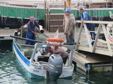 Some of the fishermen wrapping things up for a Saturday afternoon. Putting it all to bed until work again Monday morning.