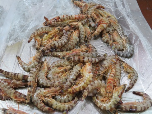 The array of various types, and certainly sizes, of shrimp today was an indication to me that many folks will be having seafood for either New Year's Eve or New Years Day. They were being purchased in large quantities.