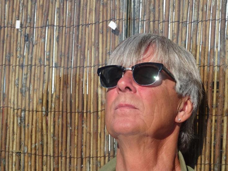 Voici ce qu'a l'air un lézard a tête humaine. Celui-ci a des lunettes de soleil et porte le nom de Randy.
