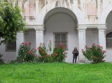 In the cloisters at Miradouro da Senhora do Monte and the magnificent poinsettia
