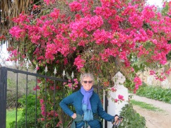 I loved the contrast between the colour of the bougainvilla and Patricia;s sweater.