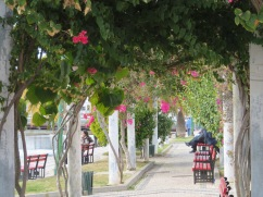 This lovely tranquil park is right next to the Gilão River. You can sit in the shade and watch the boats, the people clamming or simply the activity on the opposite side of the river.