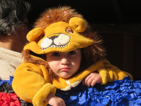 Adorable for sure.....a tiny lion in Grandma's arms