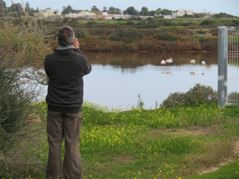 Marc photographing the flamingos.