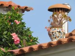 The azaleas are in bloom all over the island, providing vibrant colour everywhere.