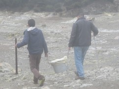 And here they are carrying the pot off to the local restaurant.
