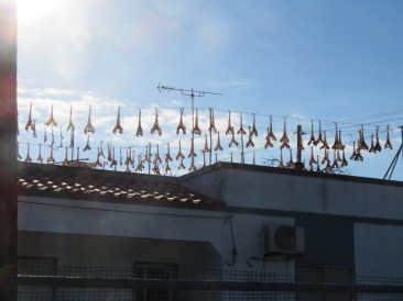 I see these split dried fish hanging here frequently.
