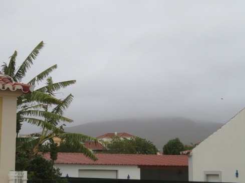 The mountain of São Miguel is hiding under all this fog. It's thick and plentiful and shows no sign of dissipating.