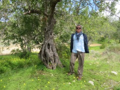 Marc next to an old gnarled tree.