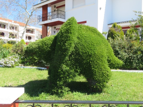I think this elephant has broken it's trunk!