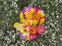 Gorgeous freesia used to create the centre of one of the designs. Heavenly scent.