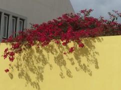 Shadows and colours on the pousada wall.