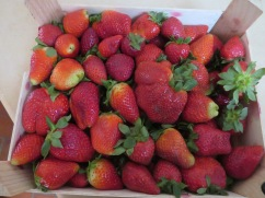 Look at this massive box of fresh strawberries we got for 4 euros. They also grow these year round in green houses........summer tastes yet again for us. Fresh crepes for breakfast....merci mon mari!!
