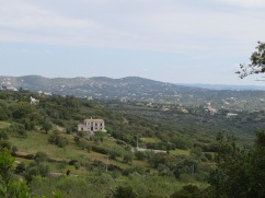 A view from part way up the mountain.