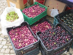 The previously mentioned olive harvest. Many bushels being sold at market today.