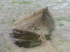 This old, long abandoned boat, which probably still bobs on the water when the tide is high, was sitting forlornly in the mud.