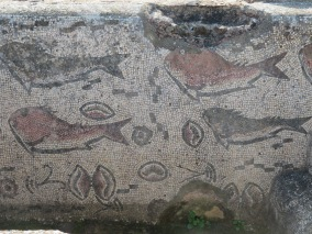 A section of mosaic tiles at the ruins.