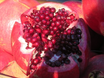 A massive pomegranate.
