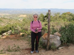 My hiking companion......she meets me stride for stride. And for the record, we did the up and down of the mountain today in record time. I think we walked as fast as we talked!!