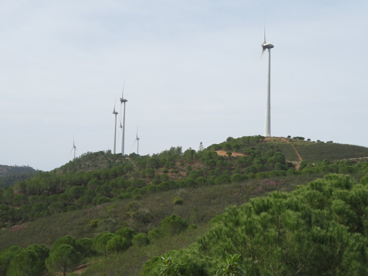 More of the windmills.
