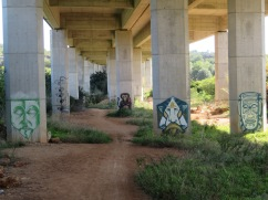 I love this patch of graffiti at the underpass of the highway..