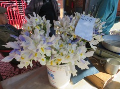 Many flowers available and these beautiful irises.