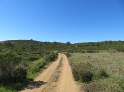A section of trail that we had passed through.