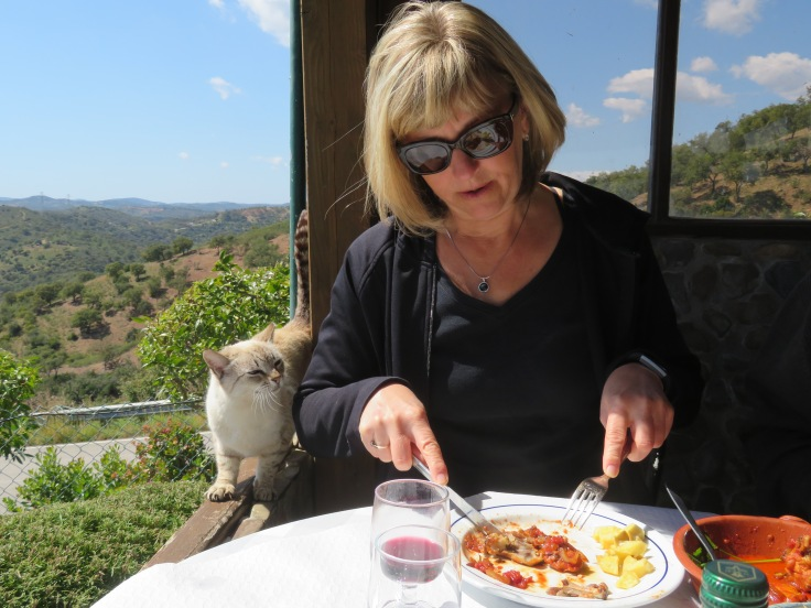 Laurie attracted a new friend who begged and begged.