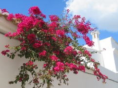 The blue sky, lone chimney and the bougainvillea......a perfect shot.