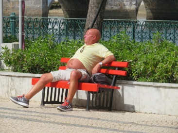 This fellow was sunning his corpulent belly.....he kept pulling his shirt up!!!