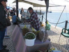 This vendor was selling quite a few snails and periwinkles.