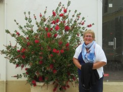 Bottle brush and a very happy Patricia