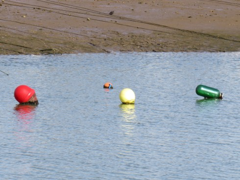 The buoys were gently bobbing on the water. Low tide.