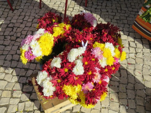Flowers were on display and for sale all throughout the market today.