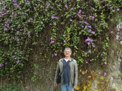 Look at the amazing walk of morning glory and that handsome fella hanging out beside it!