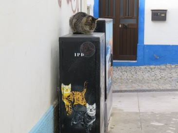 I smiled when I saw the cat curled up on top of this electrical box painted with cats.