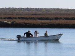 Lots of activity on the water tday.