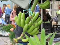 Local tiny bananas. I had intended to buy a few but forgot.