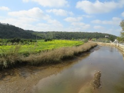 Looking up the Arade River, which is a tidal river, south of Silves